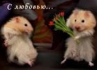 Магнит на День всех влюбленных (В-64)