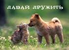 Магнит на День всех влюбленных (В-70)